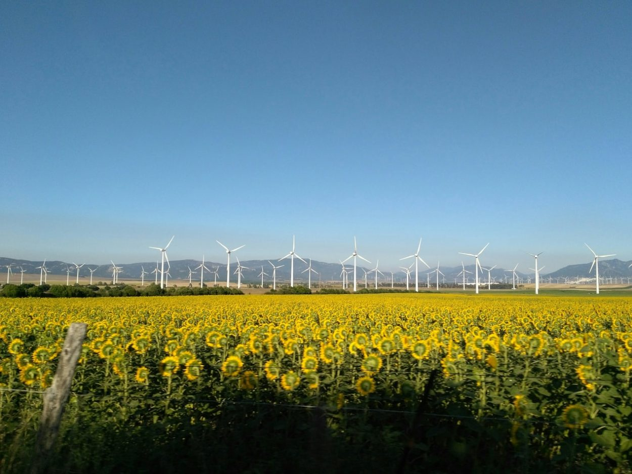 Förlängda tillstånd för vindkraftsparker, hamnar och tillverkningsindustrier till följd av covid-19